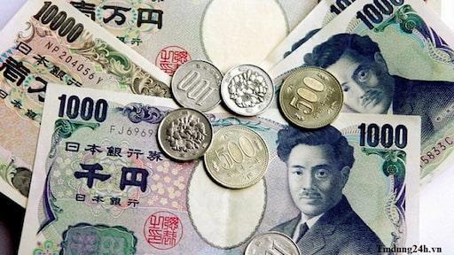 Nhật Bản đang lưu hành 2 loại tiền chính là: Tiền giấy và tiền xu